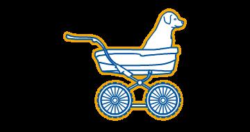 Service - Kinderwagenumbau